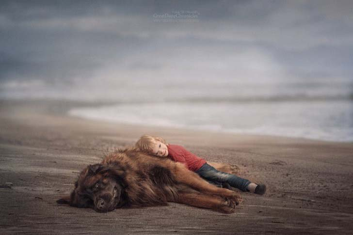 14-truly-magical-photos-of-little-kids-and-their-big-dog_10
