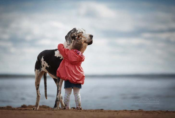 14-truly-magical-photos-of-little-kids-and-their-big-dog_12