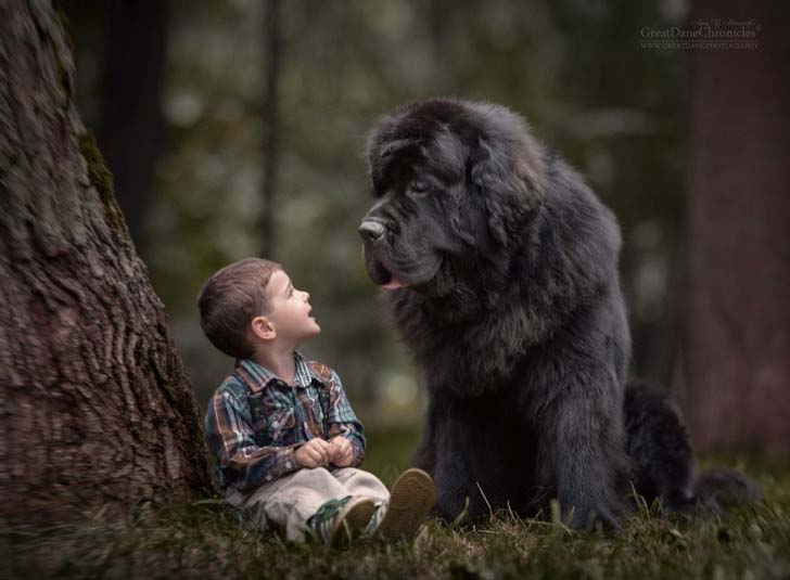 14-truly-magical-photos-of-little-kids-and-their-big-dog_13