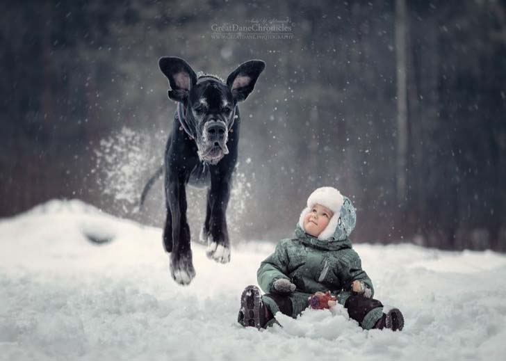 14-truly-magical-photos-of-little-kids-and-their-big-dog_14