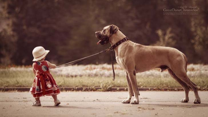 14-truly-magical-photos-of-little-kids-and-their-big-dog_15