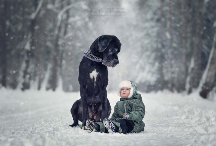 14-truly-magical-photos-of-little-kids-and-their-big-dog_4