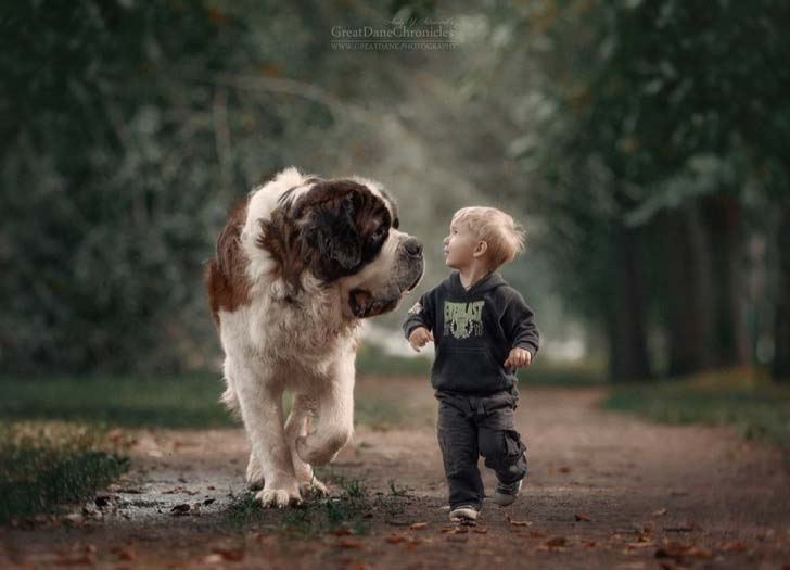 14-truly-magical-photos-of-little-kids-and-their-big-dog_6