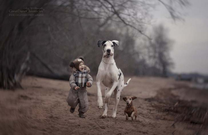 14-truly-magical-photos-of-little-kids-and-their-big-dog_7