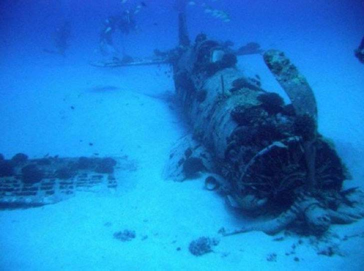 20-bizarre-underwater-discoveries-that-will-blow-your-mind_15