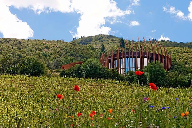 8-most-spectacular-wineries-in-the-world-that-wine-lovers-must-see_4