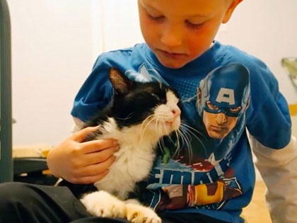 When This Family Adopted This 20-Year-Old Senior Cat, They Never Expect Just How Much Love He Had